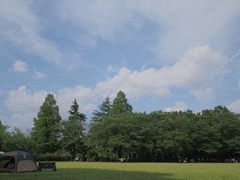 ピクニック20200530-8