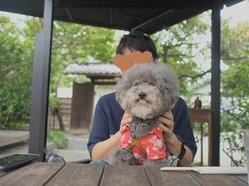 鎌倉ランチ20200708-2