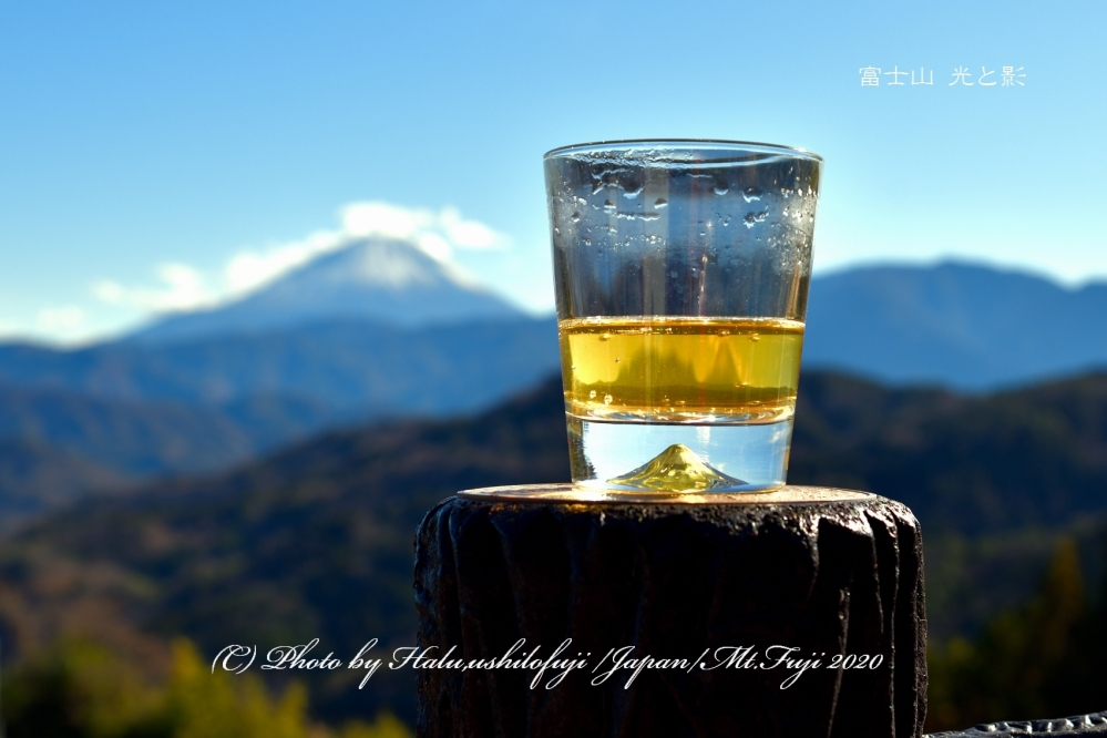富士山を呑むSN