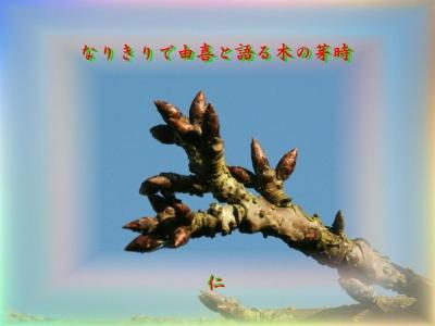 『 なりきりで由喜と語る木の芽時 』青のくさみ575交心xzx2502