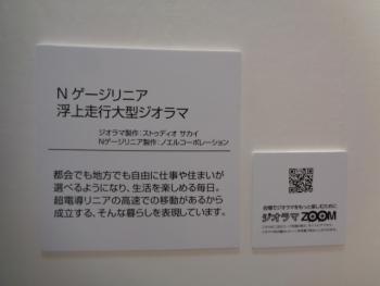 DSC00531_20200823021113400.jpg