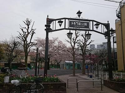200402tokiwa.jpg
