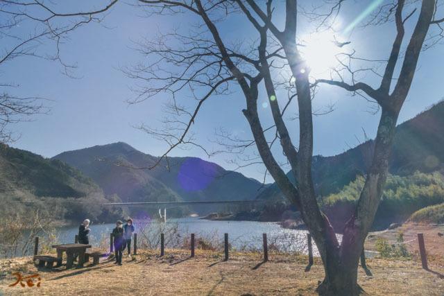 20210206ロウバイ_梅田13