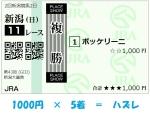 2021年5月9日(日)・新潟大賞典