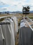 2020年5月6日・スエットの洗濯