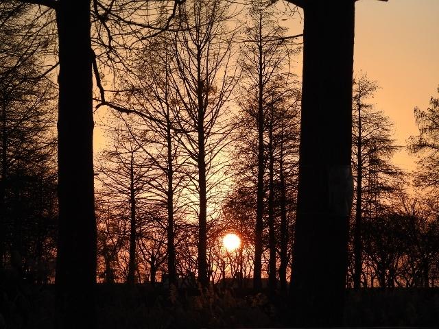 夕陽DSCN1933 (640x480)