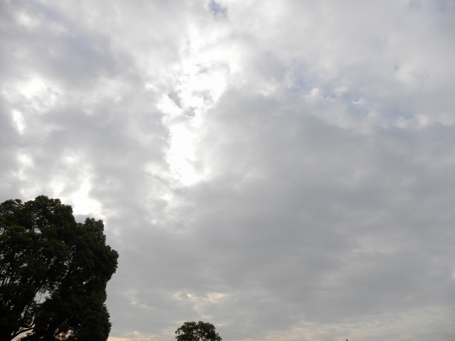 DSCN3397梅雨空 (640x480)