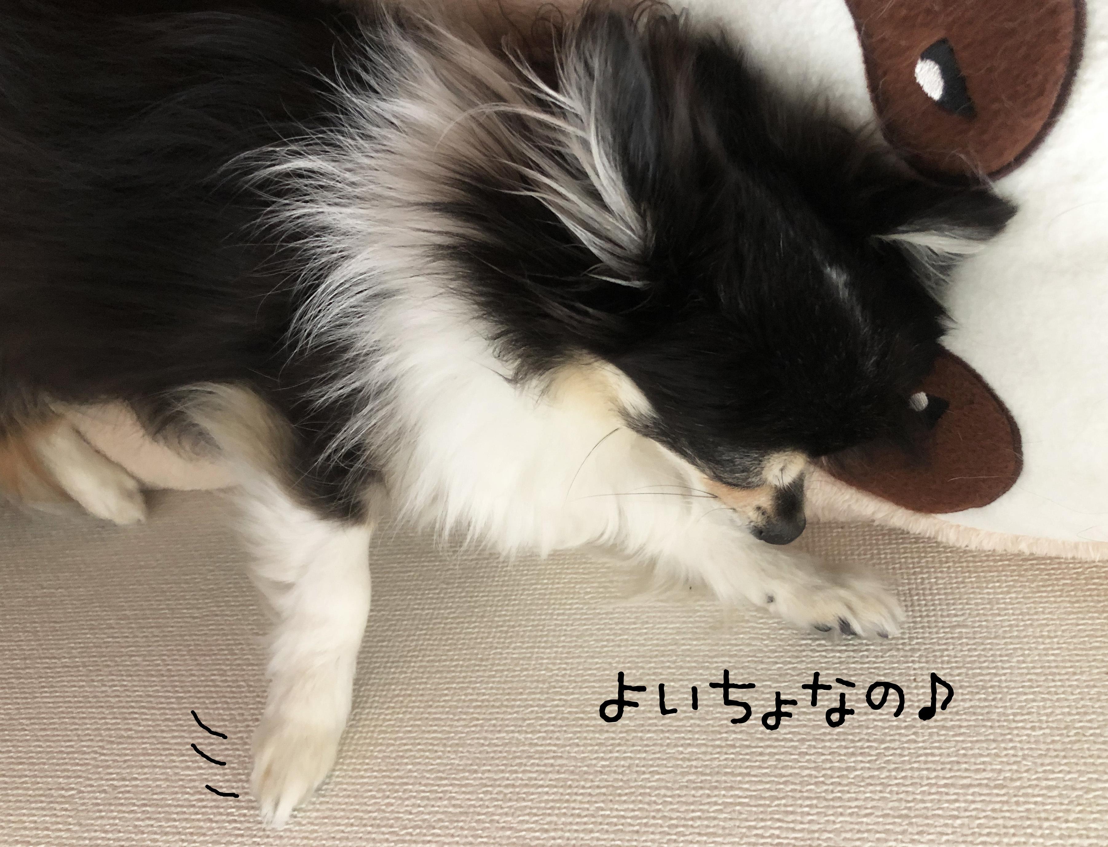 20_05あん03