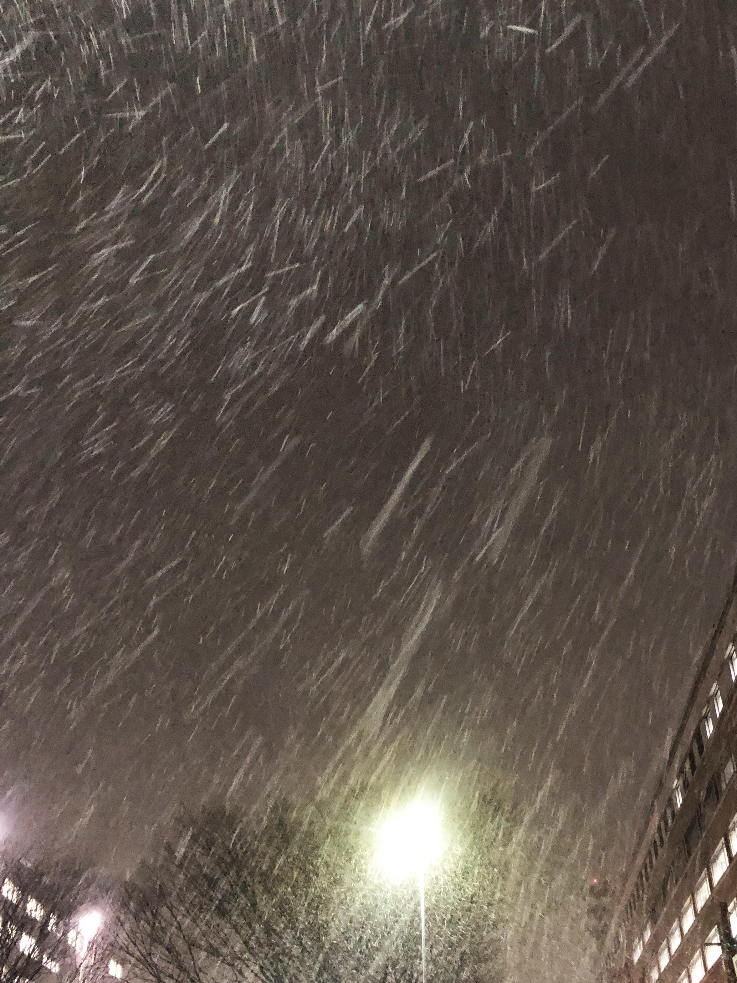 21_01雪の帰路01