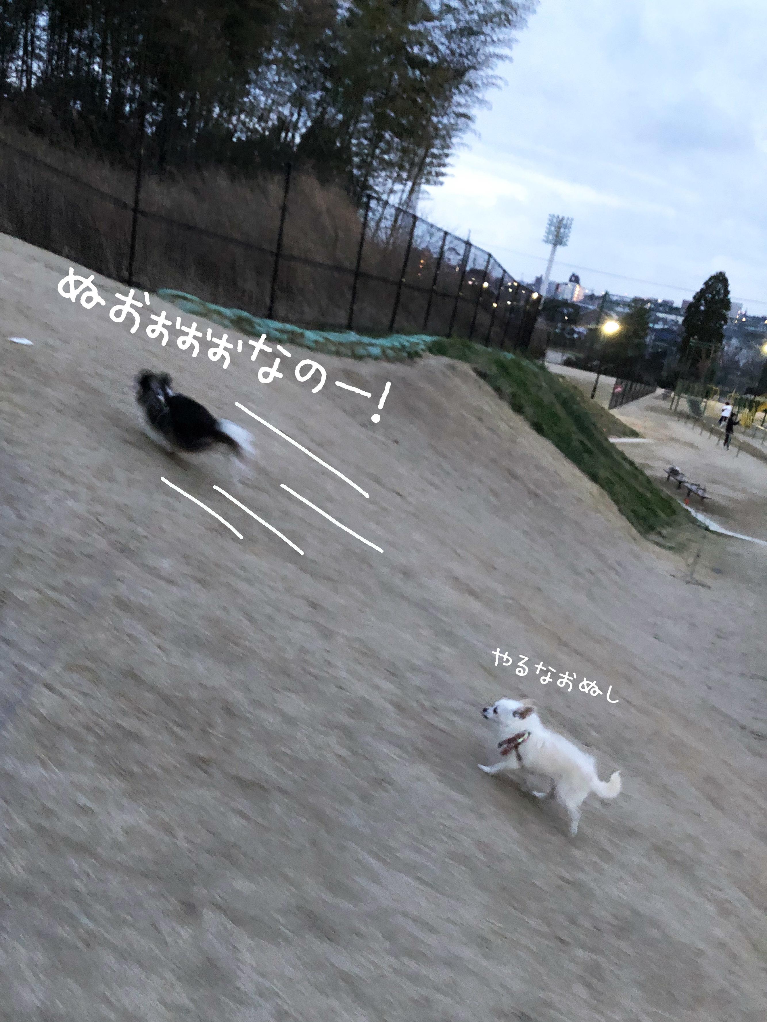 21_03全力坂01