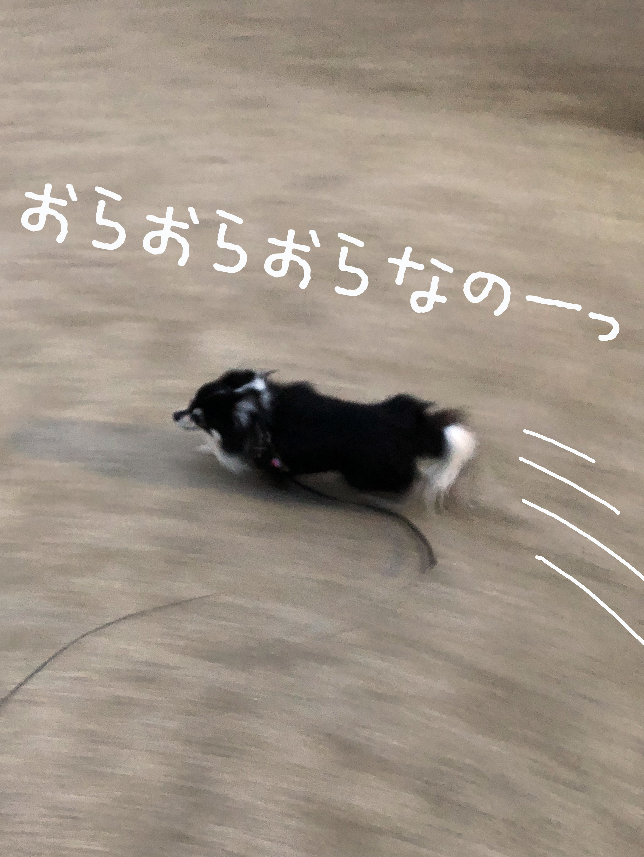 21_03全力坂02