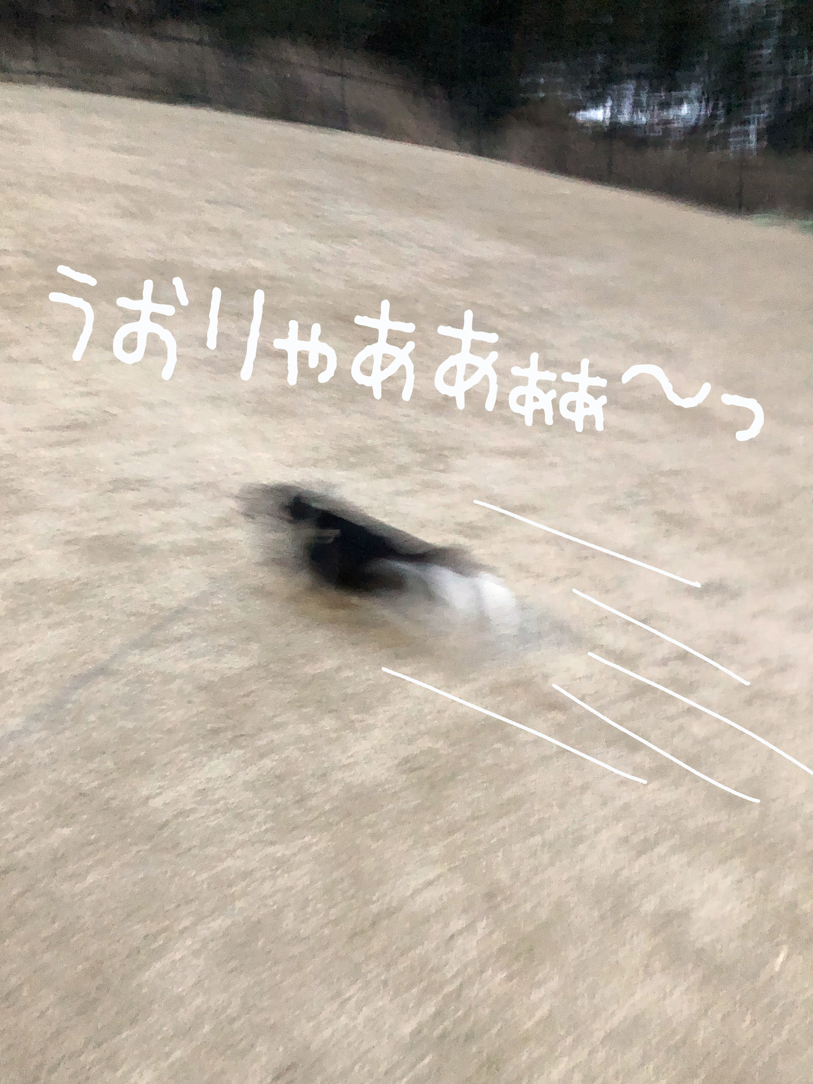 21_03全力坂03