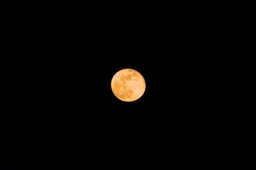 オレンジ満月