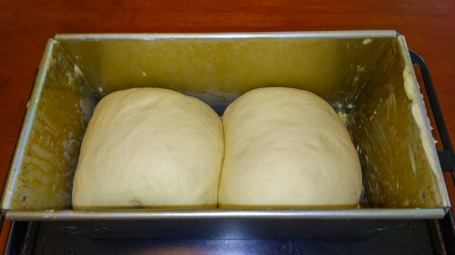 成形発酵前