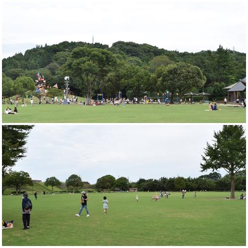 七瀬川公園1