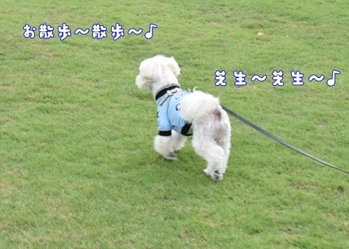 七瀬川公園4