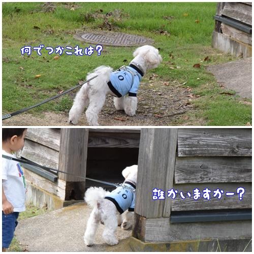 七瀬川公園9