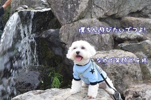 七瀬川公園16