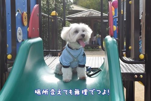 七瀬川公園18