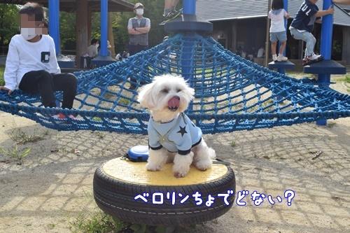 七瀬川公園19
