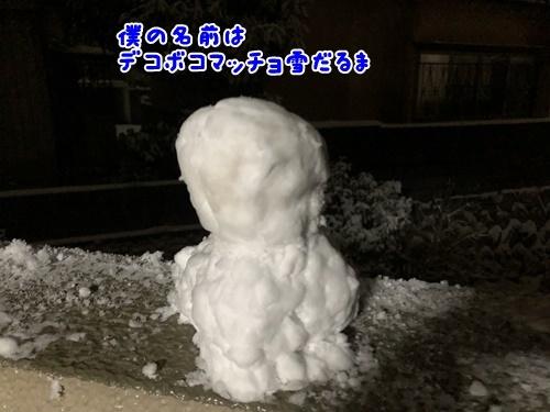 2021大雪13