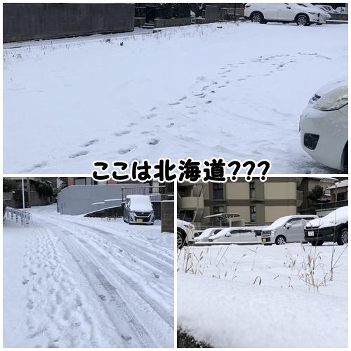 2021大雪17