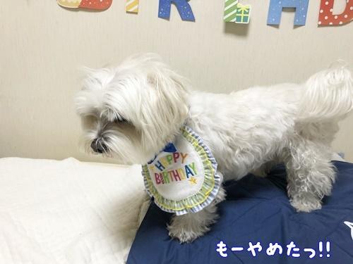 9歳誕生日31