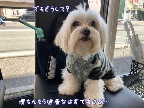 晴れのち雨2