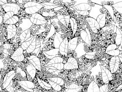 lilac_pattern.jpg