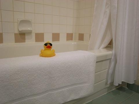 お風呂にアヒル