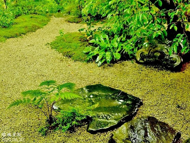 DSC_5593★瑠璃光院・瑠璃の庭★ (750x565)