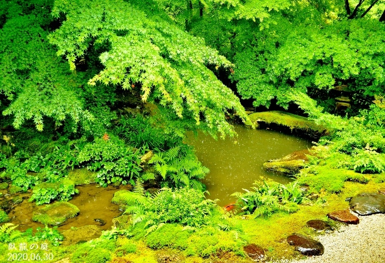 DSC_5599★瑠璃光院・瑠璃の庭★ (750x514)