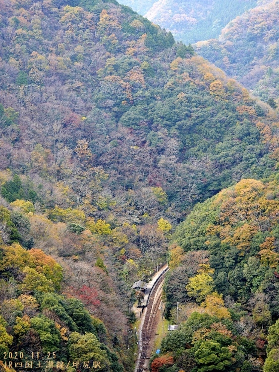 _DSC0140坪尻駅俯瞰 (563x750)