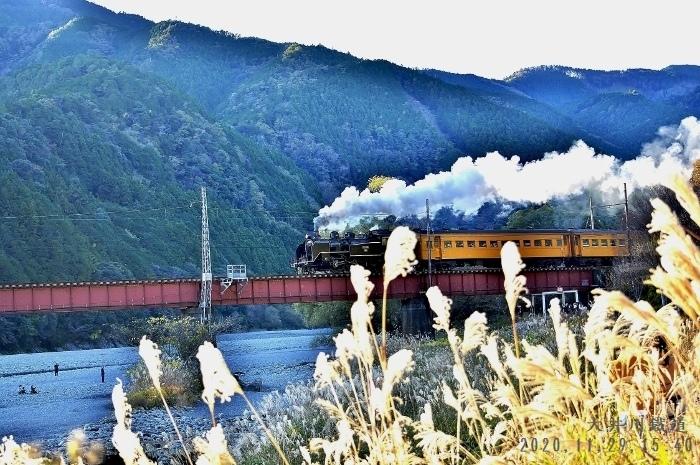20-11-29 ★大井川鉄道 018 (700x465)