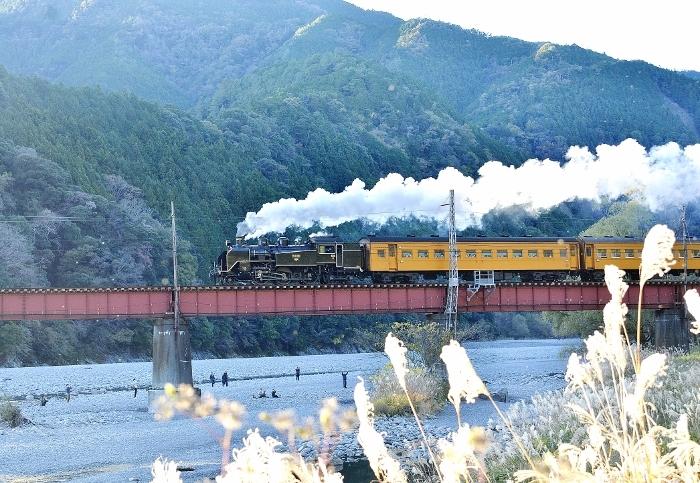 20-11-29 大井川鉄道 27 (700x483)