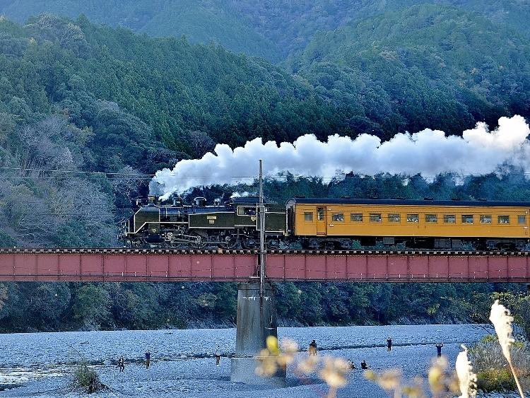 20-11-29 大井川鉄道 30