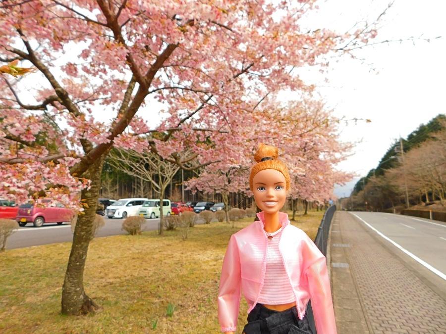 chichibu-20200322-26.jpg