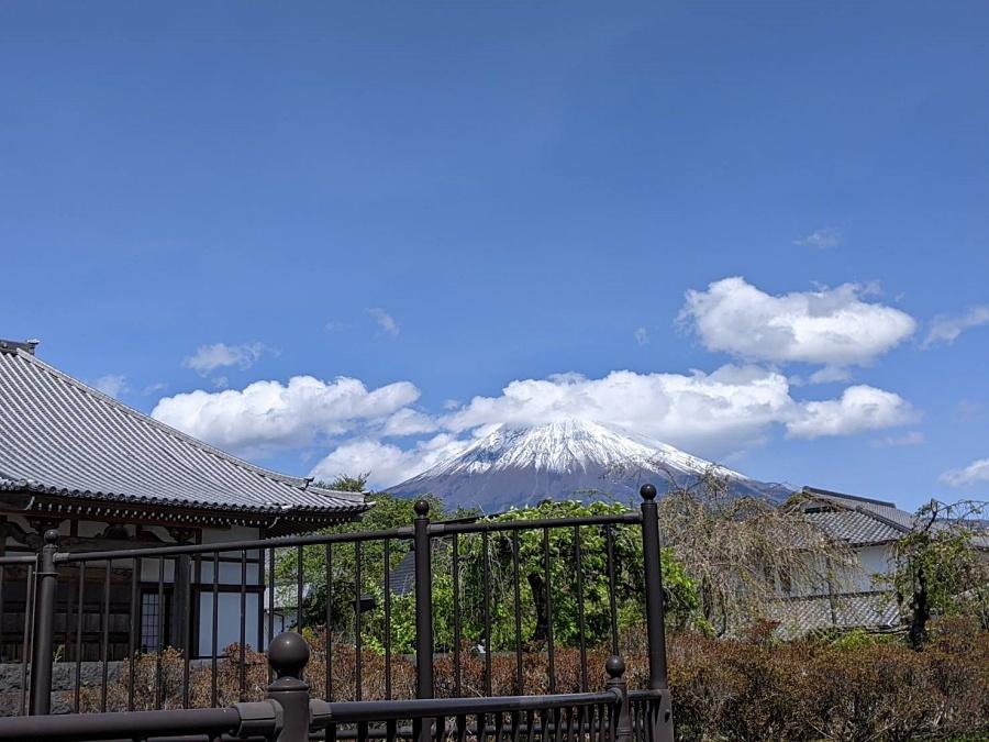 fuji-20210418-15.jpg