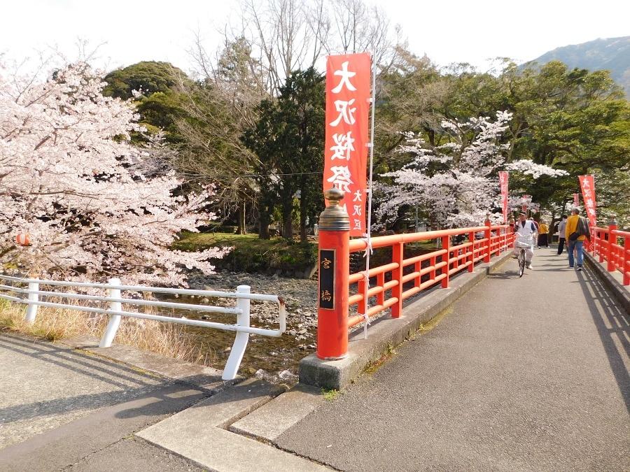 nakagawa-20210327-44.jpg