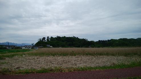 尾浦城全景