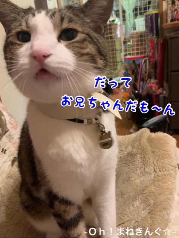 fc2blog_20210226231139ad3.jpg