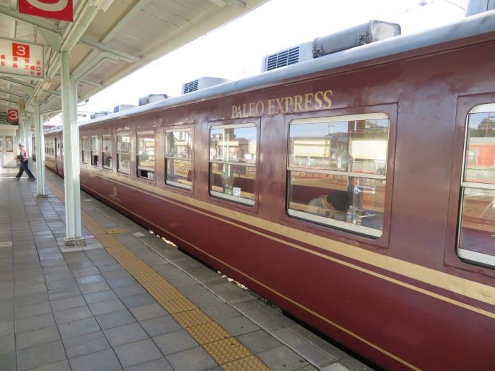 パレオエクスプレスの客車