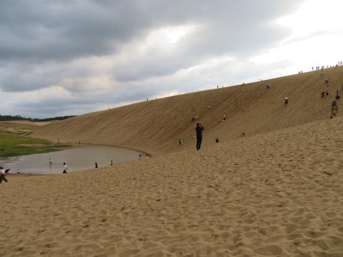 砂丘の起伏