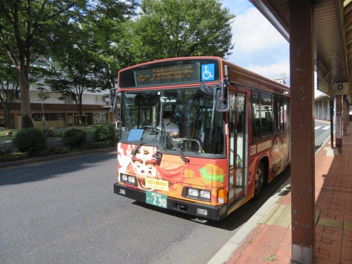 ちょっと柄が違うバス