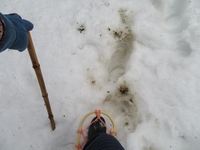 それでも雪道はツラい