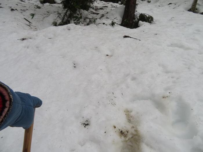 雪山は やはり険しい