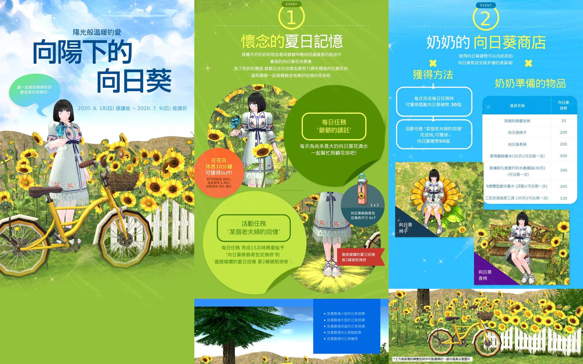 台湾・向日葵イベント