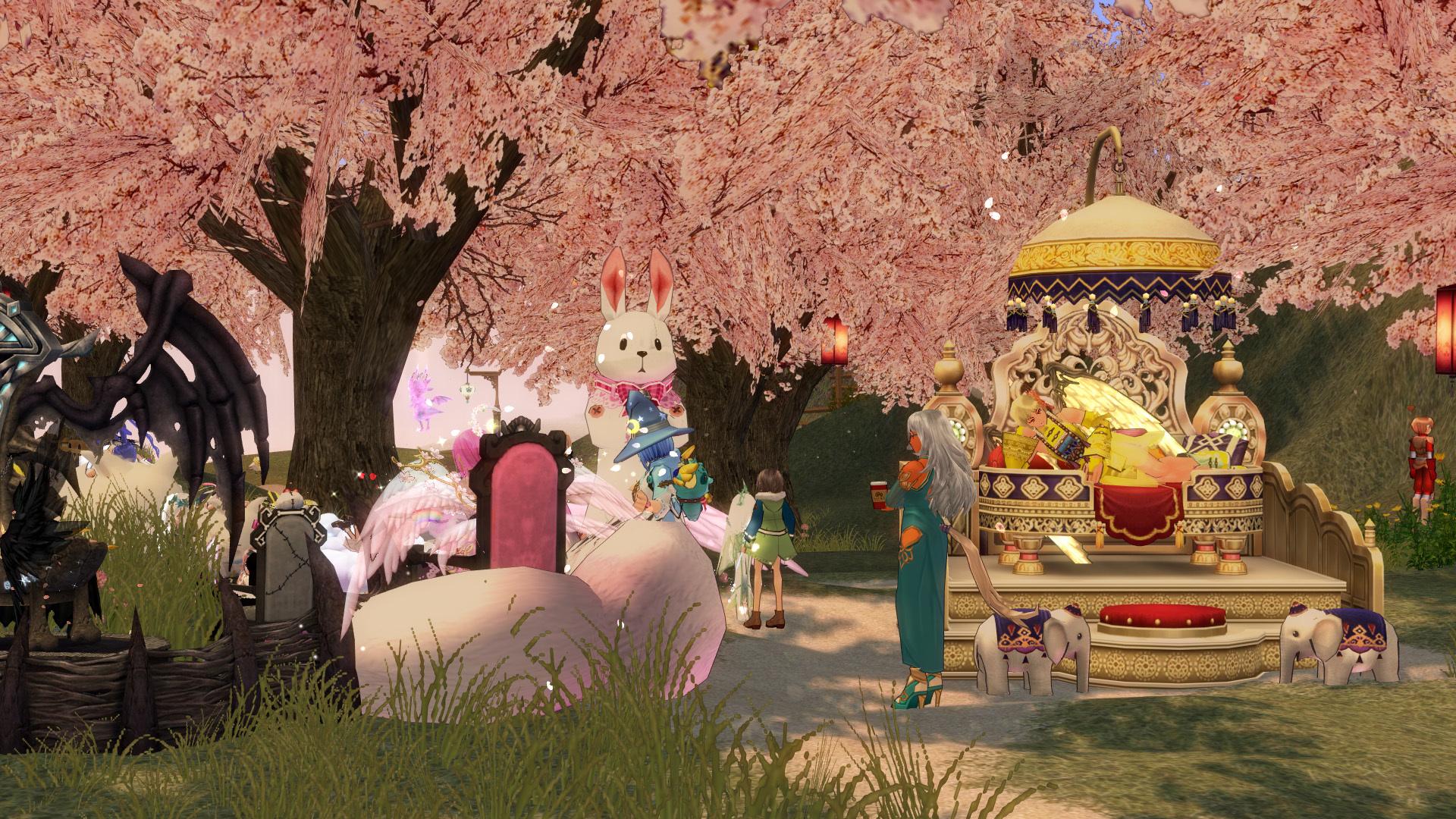 桜を愛でる気持ち01