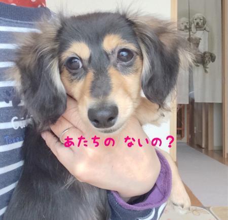 004_convert_20200420123731.jpg