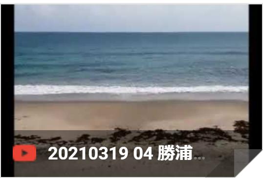3月19日 勝浦